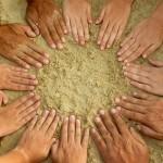 Trabajo en equipo: Agregando Valor a su Negocio